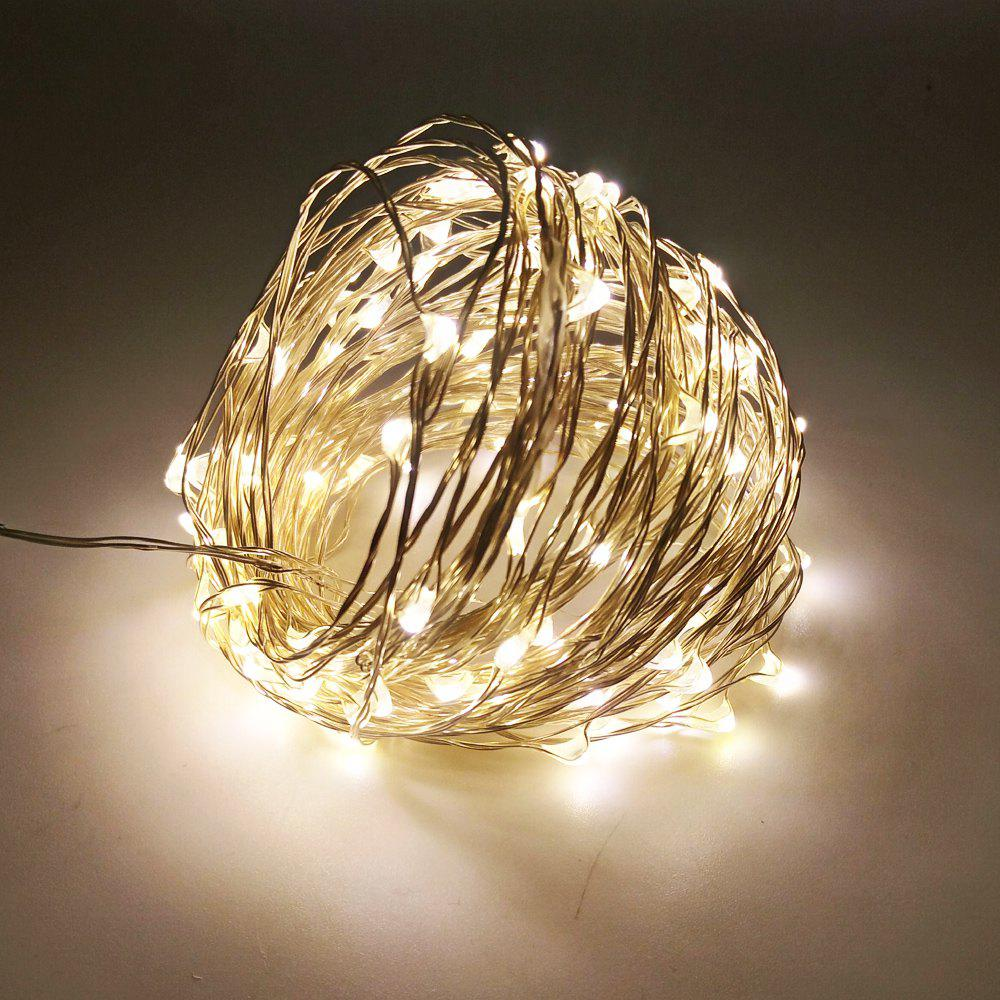 ZDM 10M 100 LED Copper Wire String Light for Festival Christmas Party Decoration DC12VHOME<br><br>Size: EU; Color: WARM WHITE LIGHT; Output Power: 5W; Voltage (V): DC 12V; Color Temperature or Wavelength: 3000 - 3500k; Features: Easy to use,Energy Saving; Function: Home Lighting,Outdoor Lighting; Available Light Color: Warm White; Sheathing Material: Copper;