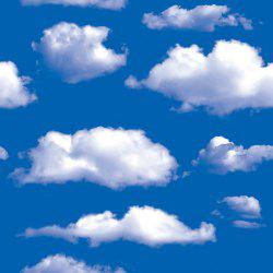 DUS Blue Sky White Cloud Wallpaper Natural DIY Wall Stickesr SA-1019