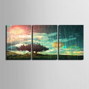 Special Design Frameless Paintings 3PCS -
