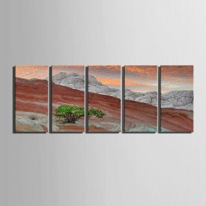 Special Design Frameless Paintings Pink Mountain Pattern 5PCS -
