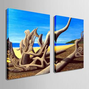 Special Design Frameless Paintings Dead Sea Pattern 2PCS -