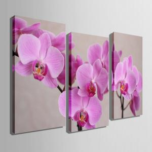 Special Design Frameless Paintings 	Purple Flowers Pattern 3PCS -