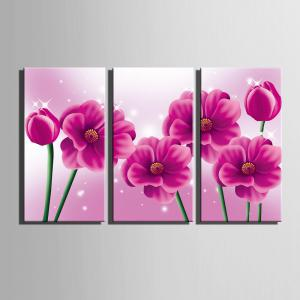 Special Design Frameless Paintings Pink memory 3PCS -