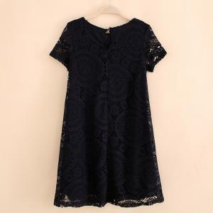 Women's Wear Casual Short Sleeved Lace Dished Dresses -