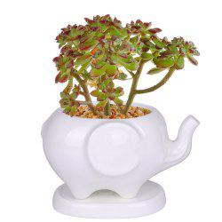 Creative Pots Succulents Elephant Shaped Ceramic Flower Pot Ceramic Home Decor -