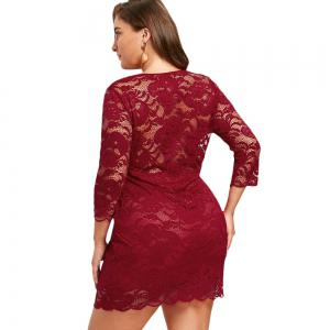 Women'S Sheath Dress 3/4 Sleeves Lace Hollow Out Sexy Plus Size Dress -