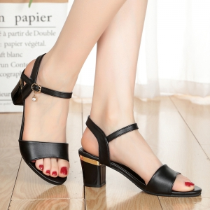 Thin Women'S Shoes with A High Heel and Thick Summer Sandals -