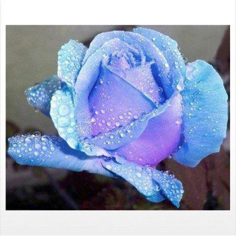 Shops Naiyue S110 Blue Roses Print Draw Diamond Drawing
