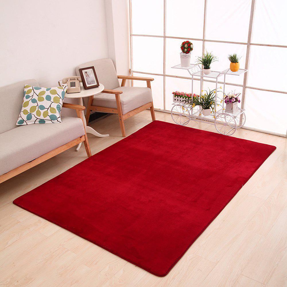 Trendy Doormat Modern Style Solid Water Proof Carpet4