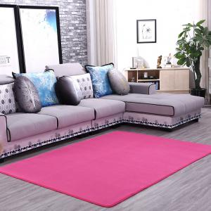 Doormat Modern Style Solid Water Proof Carpet5 -