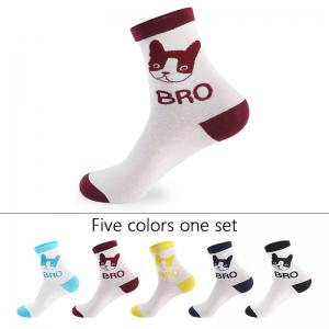 Puppy Pattern Knitted Socks - 5 Pairs -