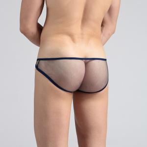 Men's Underwear Ultrafine Mesh Bag Low Waist Briefs -