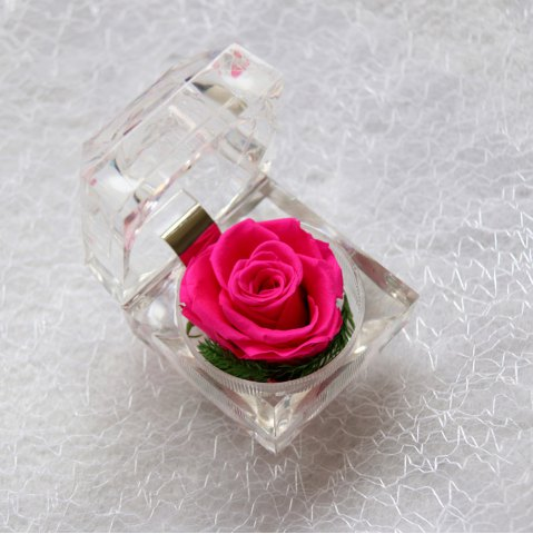 Discount Handmade Preserved Fresh Rose Upscale Immortal Flowers Gifts for Mother Day Valentine Day Wedding