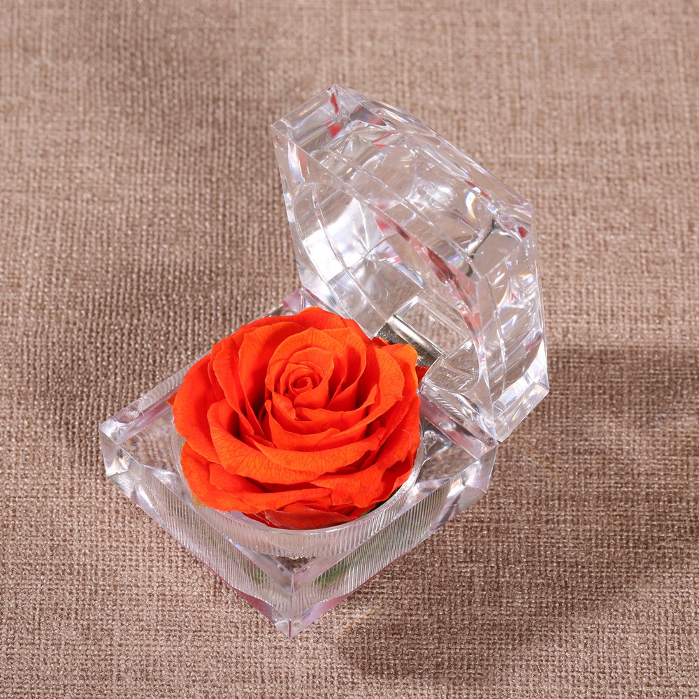 Cheap Handmade Preserved Fresh Rose Upscale Immortal Flowers Gifts for Mother Day Valentine Day Wedding