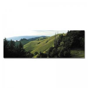 DYC 10560 Photography Alpine Landscape Print Art -