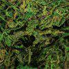 Hot Flores Artificial Dried Reindeer Moss for Flowers Grass Basket Home Garden Plants Garland Wedding Party New DIY Deco -