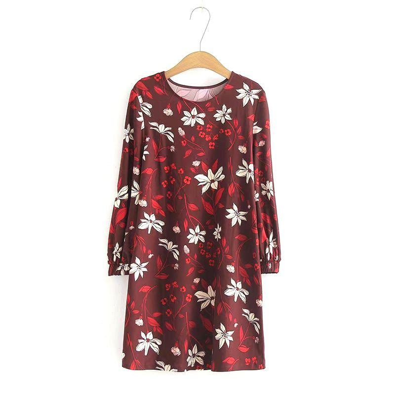 Hot New Ladies Loose Print Casual Mini Dress