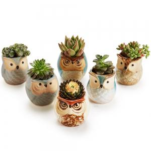 2.5 inch Mini Ceramic Flowing Glaze Base Serial Succulent Cactus Plant Flower Bonsai Pot Container with a Hole 6 in Set -