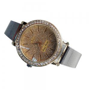 Factory Explosion Models Silver Mesh with Ladies Watch Female Fashion White-Collar Classic Quartz Watch Small Dial Brace -