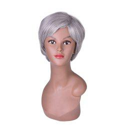 Hairyougo 2098 6 inch Short Straight Synthetic Wig Silver Grey Color Cosplay Party High Temperature Fiber Hair -