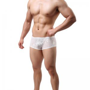Lace Men's Underwear Boxer U Convex Sexy Ultra-Thin Quick Dry Hollow Briefs -