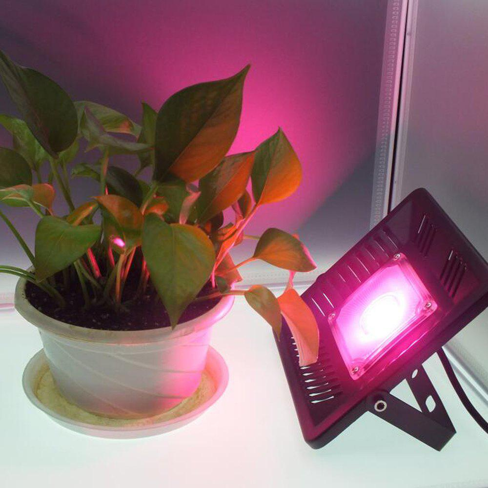 Fashion ZDM 50W Full Spectrum LED Plant Grow Flood Light Waterproof Ultra Thin For Indoor Ourdoor  AC220V