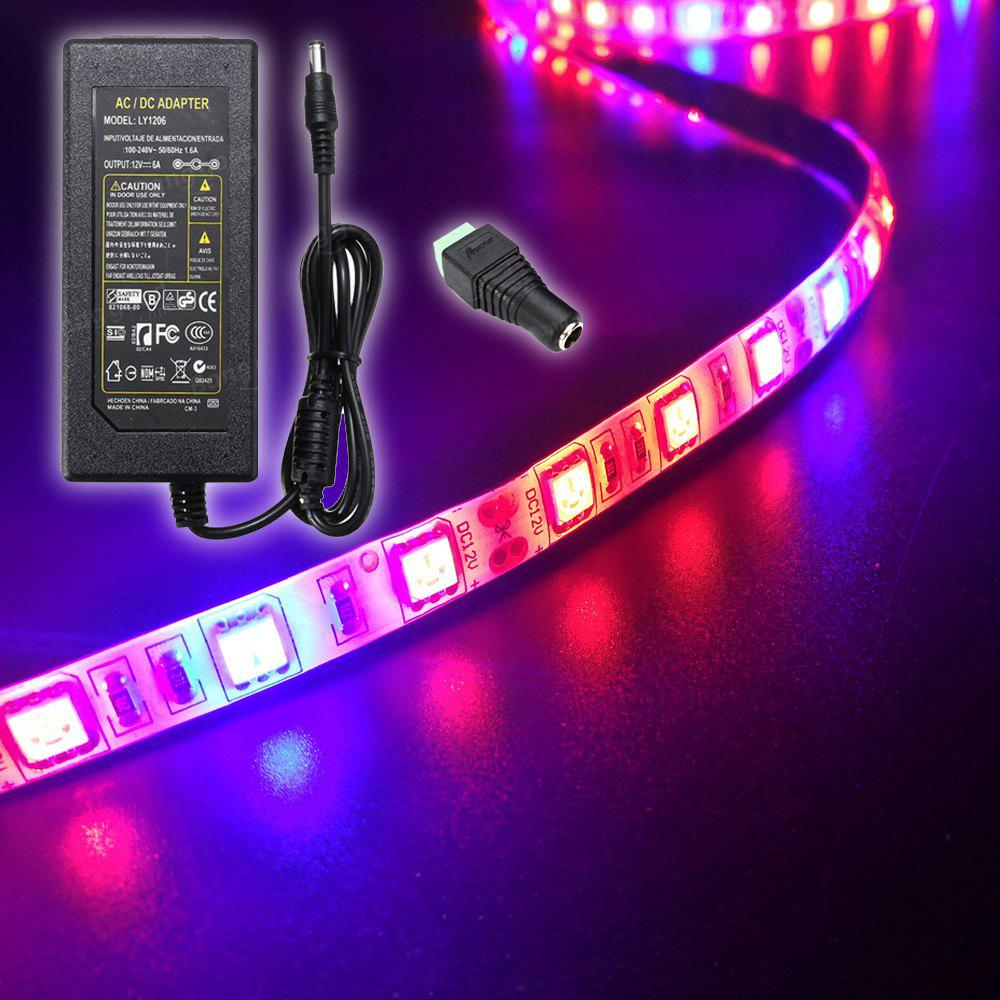 Outfits ZDM 5M Waterproof 72W 300 x 5050 LED Plant Grow Strip Ligh 6A EU Power Supply AC110-240V  with 1PC DC Female Connector