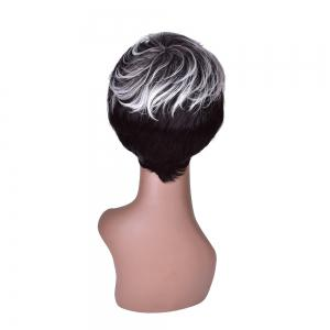 Hairyougo 0200 Short Straight Wig Synthetic Women -