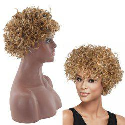 Lady Small Volume Golden Explosion Head Short Hair Wig -