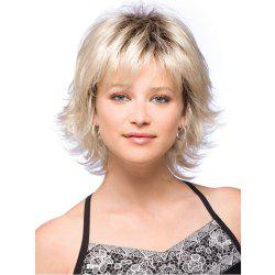 Ladies Short Fluffy Curly Hair Wigs -