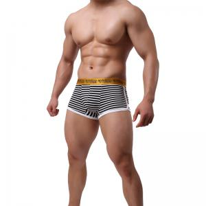 Stripes Men's Underwear Low Waist Fashion Sexy Breathable Pants -