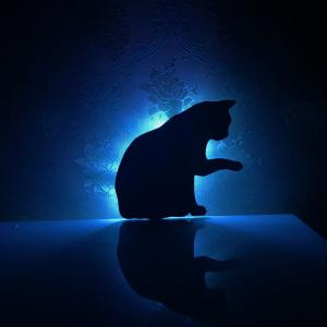 Colorful Remote Lick The Hair Cat Shadow Projection Lamp LED  Night Light -