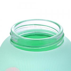 Painted Double Glazed Glass Water Cup -