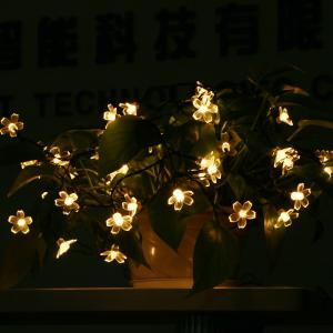 GMY Lighting Imports 50 LED Warm White Solar Flower Shaped Christmas String Lights Garden Holiday Party Decor -