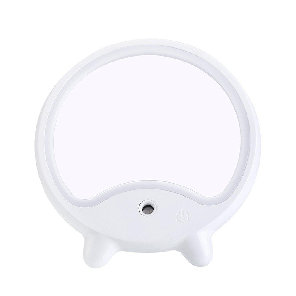 Shops LED Makeup Mirror Light Adjustable with Mist Sprayer Design
