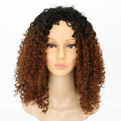 Fashion Dark Root Medium Brown Ombre Hair Synthetic Long Curly Afro African American Wigs for Women -