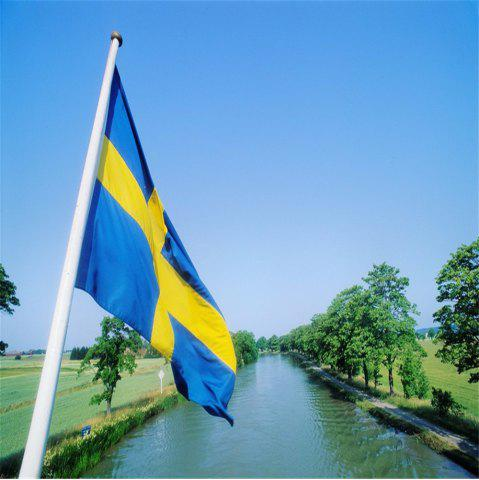 Outfits Sweden Flag Polyester National Office Event Parade Festivals Home Decor New Fashion