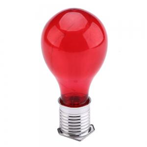Hanging Solar Light Bulb with Hook -