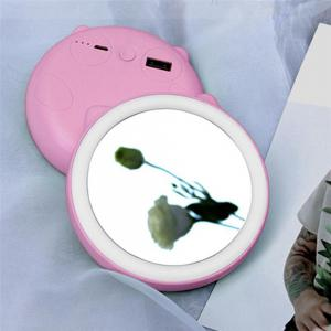 Handheld Cosmetic Mirror Charging Treasure Carry LED Small Night Light -