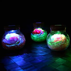 BRELONG LED Colorful Rose Vase Remote Control Glowing Glass Bottles Decoration -