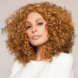 Small Volume Explosion Head Lady Wig -