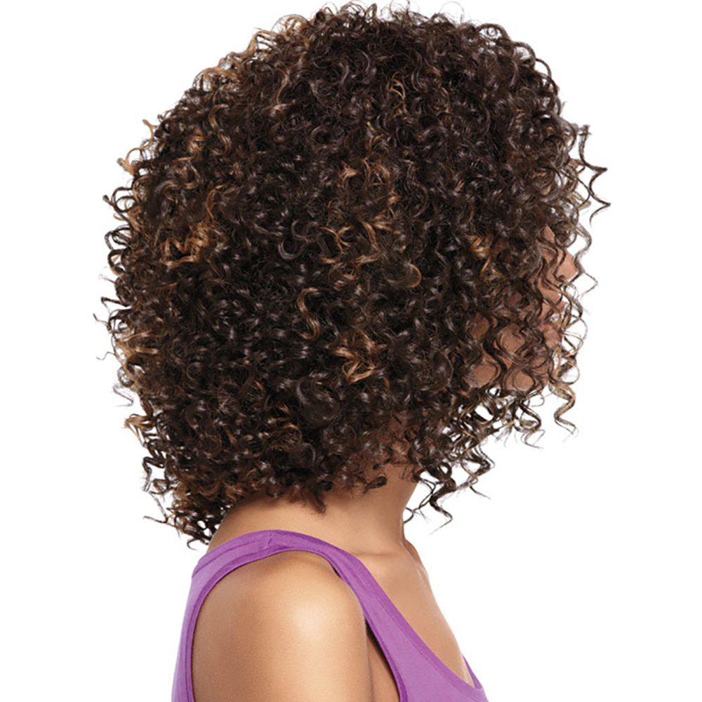 Discount Small Volume Explosion Head Lady Wig