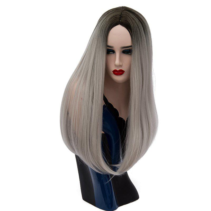 Hot Fashion Natural Long Straight Gray Hair for Women Heat Resistant Wig 24  inch a38e4497ef