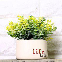 WX-1509 Pastoral Cafe Flower Shop  Flower Pot Plant Decoration -