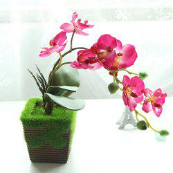 Butterfly Orchid Bonsai Artificial Flower -