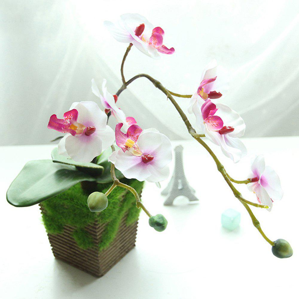 Fleur artificielle d'orchidée de papillon Bonsai