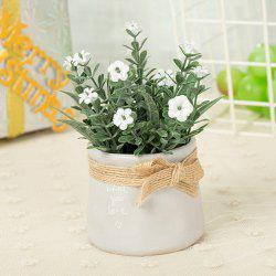 WX-C29-1679 Home Decoration Ceramic Decorative Small Flower Pot -