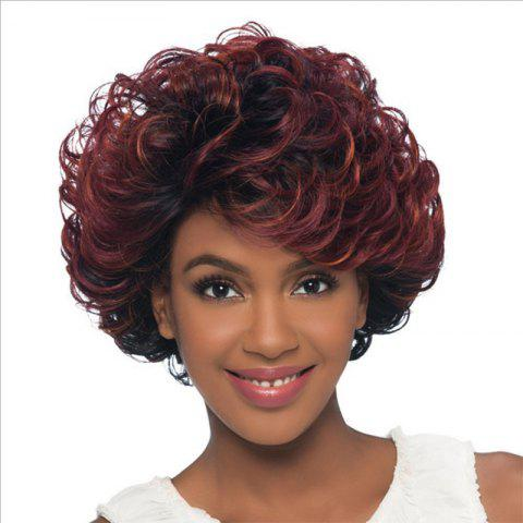 Best Wine Red Gradient Fluffy Ripple Hair Wig