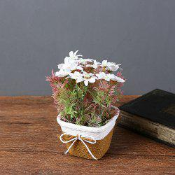 WX-C32 Rope Woven Square Bowl Potted Plant -
