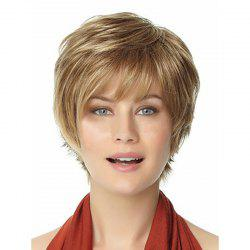 Women Fashion Curling Short Hair High Quality Synthetic Wig -